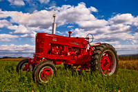 20081026-Carl's tractor show-6143-Edit.jpg